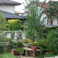 植栽・花壇